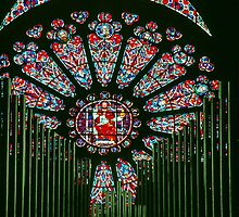 Rose window through Organ Pipes Cathedral Soissons France 198405070013 by Fred Mitchell