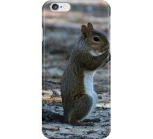 Little Squirrel iPhone Case/Skin