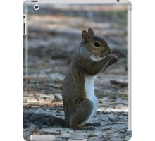 Little Squirrel iPad Case/Skin