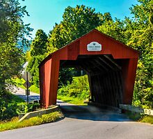 Cooley Covered Bridge by Mary Carol Story