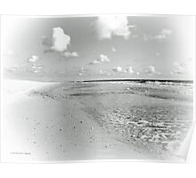 Summer Seashore - Black and White Poster