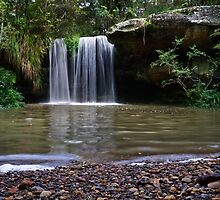 Berowra Waterfall by Werner Padarin