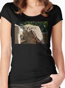 Baringo Giraffe Women's Fitted Scoop T-Shirt