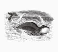 Vintage Whale Swimming and Blowin' T-Shirt