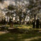 Cemetery. St. Peters. N.S.W. by VenturAShot
