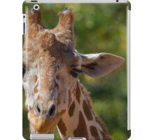 Giraffe at Denver Zoo iPad Case/Skin
