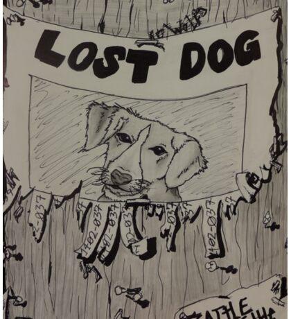 Lost Dog Sticker