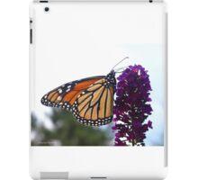 Chasing Monarchs iPad Case/Skin