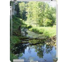 Raging river, still waters iPad Case/Skin