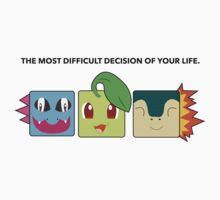 Generation 2 Starters Hard Decisions by luffnstuff