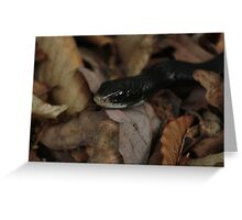 The Slither Greeting Card