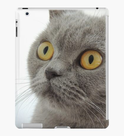Cat Huh?! iPad Case/Skin