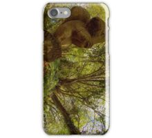 Squirrel Sculpture on path through Prehen Woods,  Derry iPhone Case/Skin