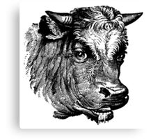 Vintage Cattle Head - Small horns - woodcut style Canvas Print