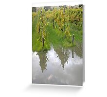 Vineyard reflection Greeting Card