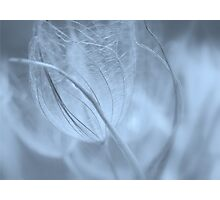 Wispy #5 Photographic Print