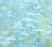 Field of Dreams... by Laurie Minor