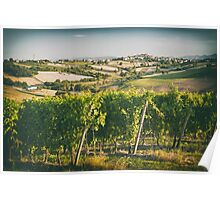 Vineyard fields in front of Morro d'Alba in Marche, Italy Poster
