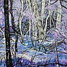 'Lavender Woods' by Jerry Kirk