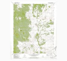USGS TOPO Map Arizona AZ Bishop Lake 310480 1981 24000 Kids Tee