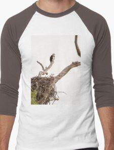 Nesting Osprey Men's Baseball ¾ T-Shirt