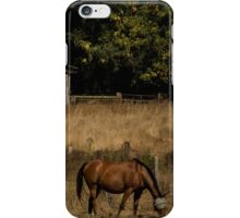Grazing at Home iPhone Case/Skin