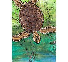 Trevor the Turtle Photographic Print