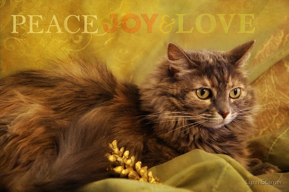 Peace, Joy & Love by Lynn Starner