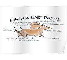 Dachshund Parts Poster/Card Poster