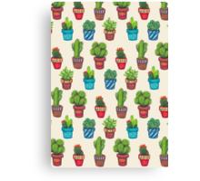 Cactus Pot Plant Garden Canvas Print