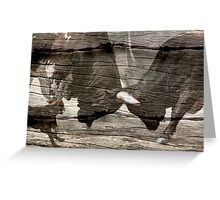 BULL FIGHT AT THE OK CORRAL Greeting Card
