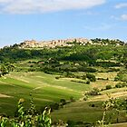 Montepuciano on the Hill by Barbara  Brown