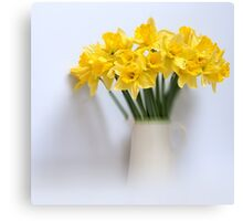 Daffodils in Jug Canvas Print