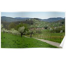 The Vosges Mountains Poster