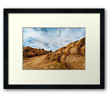 Hay bales on the field after harvest Framed Print