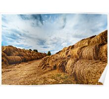 Hay bales on the field after harvest Poster