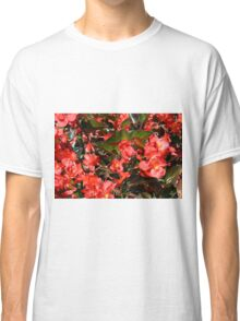 Pattern with red flowers and leaves. Classic T-Shirt