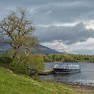 Lough Leane Killarney by Pauline Tims