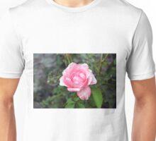 Pink rose, natural background. Unisex T-Shirt