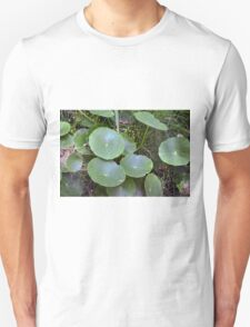 Natural background with waterlily  Unisex T-Shirt