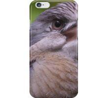 Blue Winged Kookaburra  iPhone Case/Skin