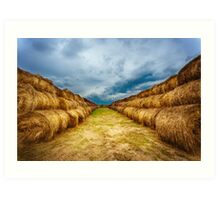 Landscape with hay bales on the field after harvest Art Print
