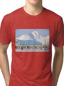 Auster Rookery Tri-blend T-Shirt