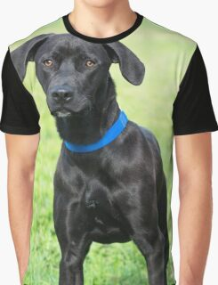 Black Dog Graphic T-Shirt