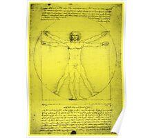 Vitruvian Man, Leonardo Da Vinci Poster