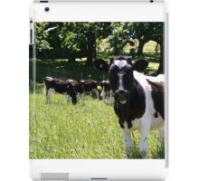 Jersey Cows iPad Case/Skin