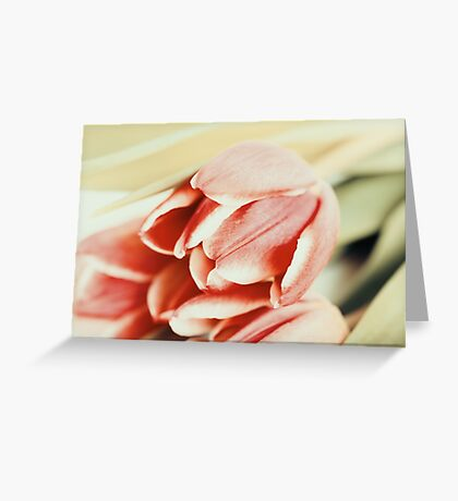 Flowers Bouquet Of Spring Wet Tulips On Table Greeting Card