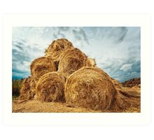Hay bales on the field after harvest Art Print