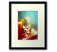 THE 11TH DOGTOR Framed Print