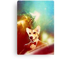 THE 11TH DOGTOR Canvas Print